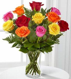 F492 - 1 dozen long stem mixed roses