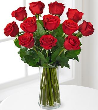 FE82 - 1 dozen long stem red roses