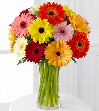 FG27 - Colorful world gerbera daisy bouquet